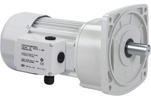 200W AC Industrial Gearmotors