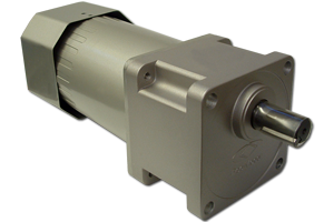 AC Induction Gear Motors - ACP-M