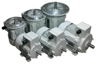 AC Industrial Motors