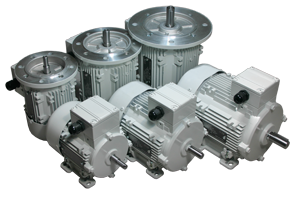 Type - AC Industrial Motors