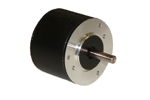 Brushless DC Motors - BLWR17