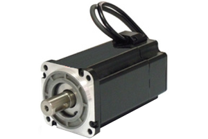 Brushless Motors - BLK24