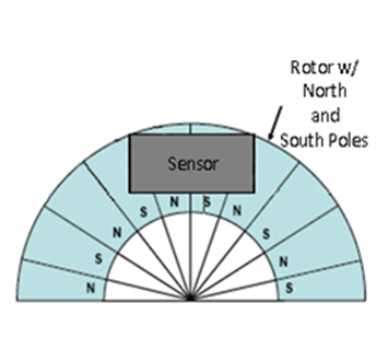 Figure 2 Magnetized Rotor